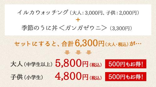 イルカウォッチング(大人:2,500円、子供:1,500円)+ ぜっぴん旬の生うに丼(1,665円)