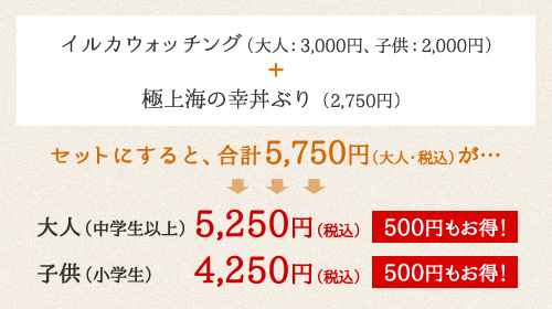 イルカウォッチング(大人:2,500円、子供:1,500円)+ ちょっと贅沢な丸健セット(2,862円)
