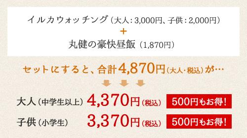 イルカウォッチング(大人:2,500円、子供:1,500円)+丸健水産の海鮮ひつまぶし(2,160円)
