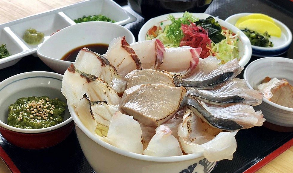 イルカウォッチング + 目の前で炙る!海鮮炙り丼