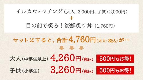 イルカウォッチング(大人:3,000円、子供:2,000円)+ 目の前で炙る!海鮮炙り丼(1,815円)